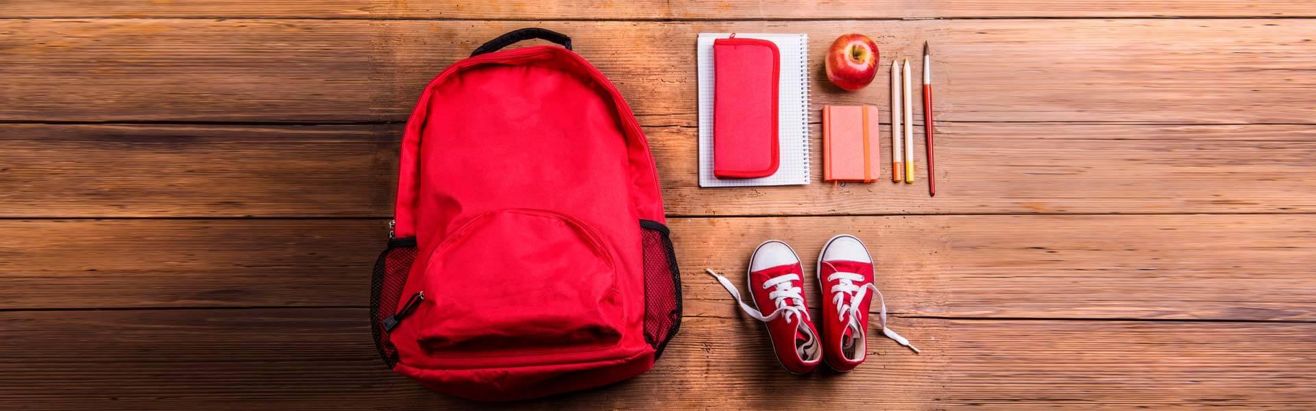 diario scolastico vans